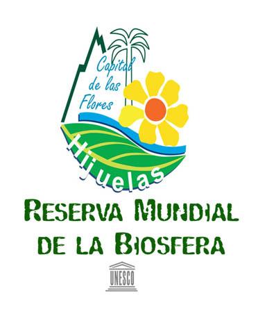 I. Municipalidad de Hijuelas